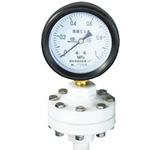 YTP-75P,YTP-100P四氟耐腐隔膜压力表