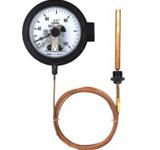 WTZ-288电接点压力式指示温度计