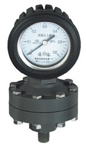 YTP-100S全塑隔膜压力表,耐强腐压力表