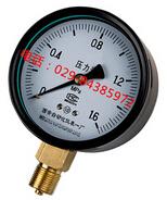 Y-100、1.0级普通压力表