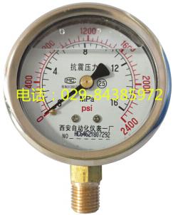YTN-60耐震压力表N1/2螺纹