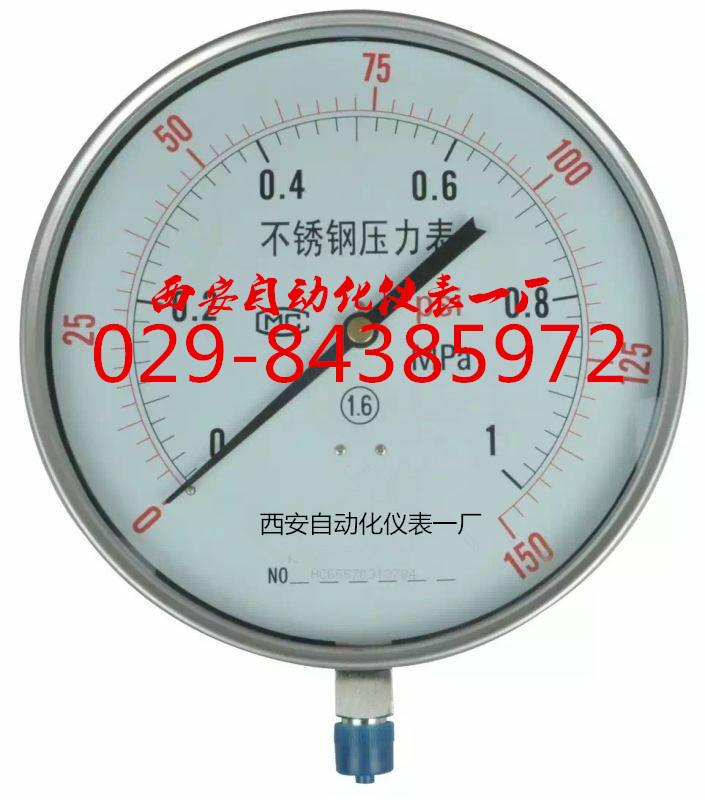 Y-250BF不锈钢压力表YTN-250BF不锈钢耐震压力表
