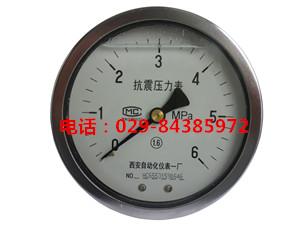YTN-100BF-Z轴向不锈钢耐震压力表