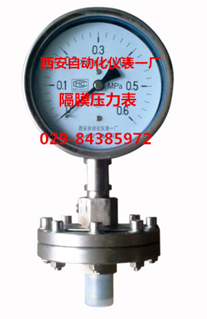 YTP-100隔膜压力表,Y-100BFML,YTP-100XL