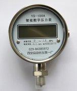 YS-100A数字压力表,数字精密压力表