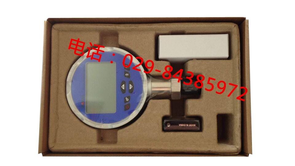 0.02级精密数字压力表DP-385