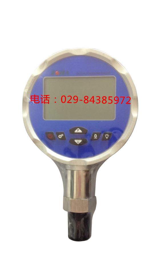 0.05级精密数字压力表DP-385