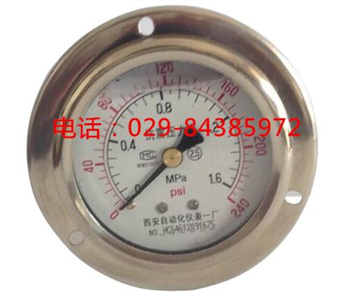 YTN-60ZT抗震压力表