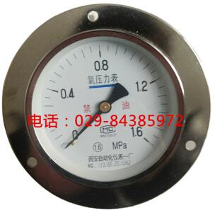 YO-100ZT氧压力表