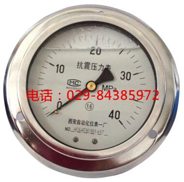 YTN-150ZT耐震压力表