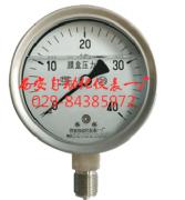 YTNE-100B,不锈钢耐震膜盒压力表